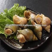 frozen whelk sashimi seafood