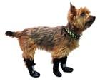 Set of 4 Dog Boots Size: Medium/large