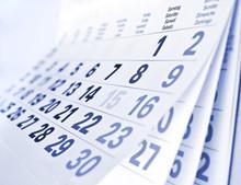 Professional New Design Wall Calendar Native English/ German/ French/ Thai/ Turkish Contact TOP !!!
