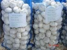 2014 Natural Garlic