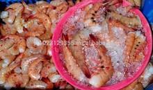 Pink (Penaeus brasiliensis) and Scarlet (Plesiopenaeus edwardsianus) shrimps