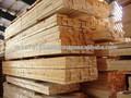 فيتنام مطاط خشب تجفيف الخشب