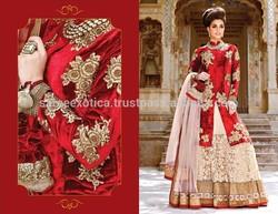 pakistani wedding bridal heavy work lehenga / reception bridal designer lehenga saree / long sleeves floor length bridal lehenga