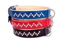 Premium Rhinestone 2-Ply Leather Collar for Medium Larger Breeds 2 sizes Blue Red Black