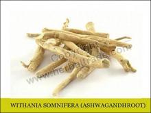 WITHANIA SOMNIFERA - ASHWAGANDHA ROOT