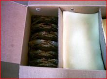 crabe de boue (serrata de scylla)