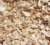 Eucalyptus Wood chips Environment friendly