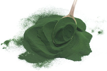 BEST QUALITY SPIRULINA AND CHLORELLA POWDER SUPER GREEN FOODS