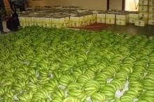 Fresh banana Cavendish