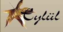 Textile Service Agency