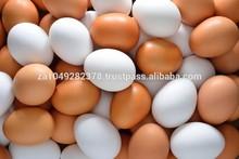 fresco huevos de mesa blanco y marrón