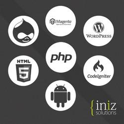 Online mobile shopping store B2C C2C B2B website design and development