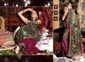 Triveni Hint etnik giyim işlemeli saree- 2508