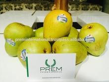 Fresh Indian Pears