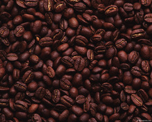 Coffee Beans for sale