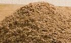 russian wheat bran