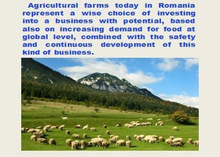 Invest in a new or an existing agricultural company located in East Europe, in Romania.