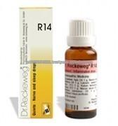 Reckeweg Homeopathy R14 Sleep and Nerve Drops - 22 ml