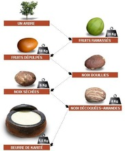 Basic natural karite butter!
