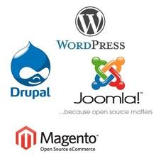 Software development, website development, online wholesale shop