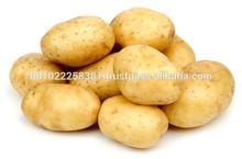 Supplying of Potato from Dhaka, Bangladesh