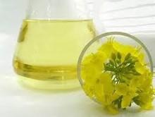 Extra virgin canola oil - 0,5 liter glass bottle
