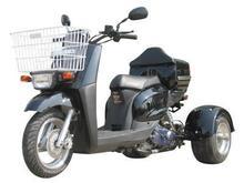 Mini Cruzzer 50cc Trike
