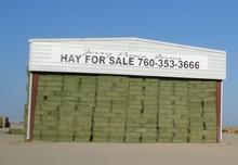 Alfalfa Hay, Bermuda Grass, Klein Grass, Oat Hay, Wheat Hay, Bermuda Straw