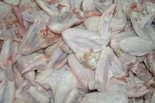 Halal slaught Grade A Frozen Chicken Paws, Wings, and Breast