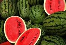 Fresh water melon fruits