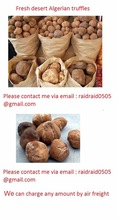 Natural Pure Health Hight Quality Algerian truffles