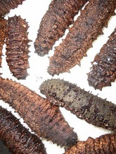 Best Quality Dried Sea Cucumber