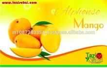 Standard Alphonso Mango