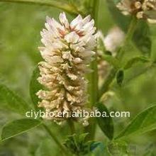 Herbal Glabridin Licorice Extract powder
