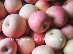 yantai sweet deliciouse apple