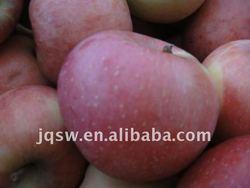 High Quality Fresh Fuji Apple For Sale