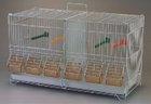 galvanized bird cage