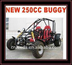EEC 250CC OFF ROAD BUGGY(MC-412)
