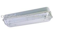 IP65 emergency light