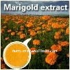 100% Natural Marigold P.E.