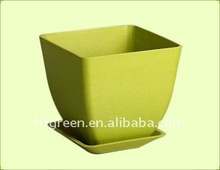 biodegradable container pots