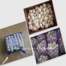 Chinese Garlic CIF Price - Competitive Price and High Quality