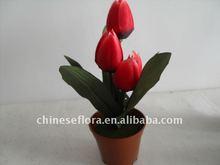red mini colorful artificial tulip flower pots