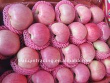 Shannxi Qinguan apple