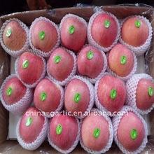 China Fuji Apple New Crop