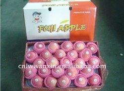 GRADE A fuji apple,apple,fresh apple supplier for sale
