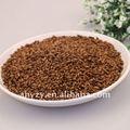 Secas chá de cevada( damaicha)