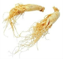 Ginseng Extracts 20% factory