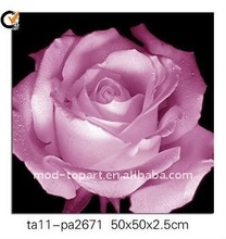 WALL ART 2012 NEW ITEMS CANVAS PRINTING&HOME DECORATION&PRINTING CANVAS