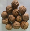 China walnut walnuts for sale